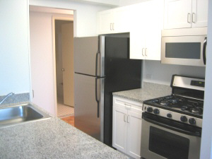 2 Bedrooms, Civic Center Rental in NYC for $6,229 - Photo 1