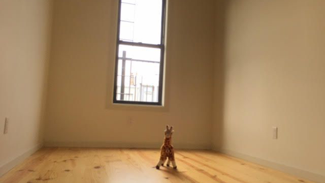4 Bedrooms, Bushwick Rental in NYC for $3,850 - Photo 2