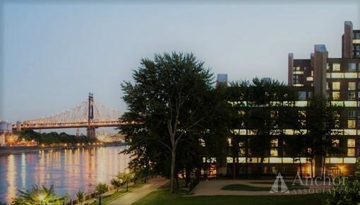 4 Bedrooms, Roosevelt Island Rental in NYC for $4,495 - Photo 2
