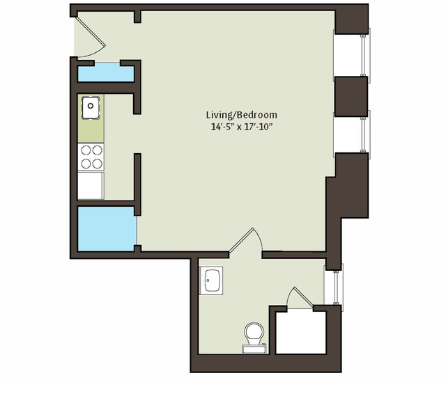 Studio, East Hyde Park Rental in Chicago, IL for $978 - Photo 2