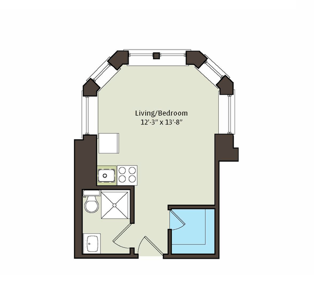 Studio, East Hyde Park Rental in Chicago, IL for $771 - Photo 2