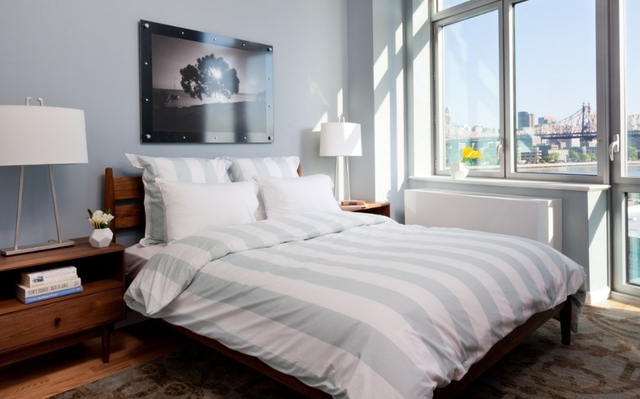 1 Bedroom, Hunters Point Rental in NYC for $3,346 - Photo 2