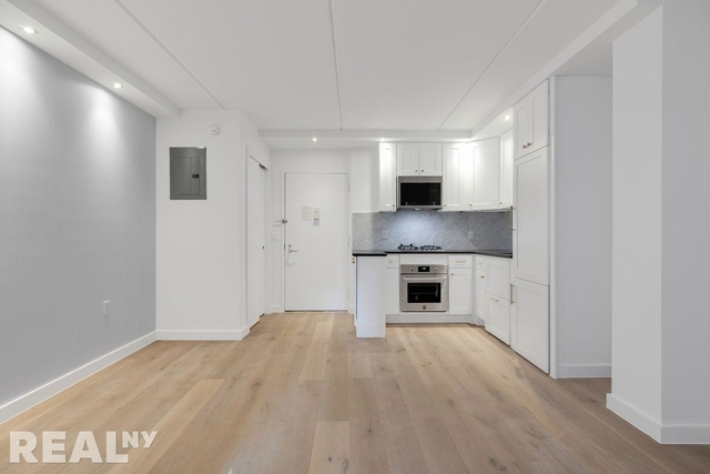 1 Bedroom, Two Bridges Rental in NYC for $3,527 - Photo 1