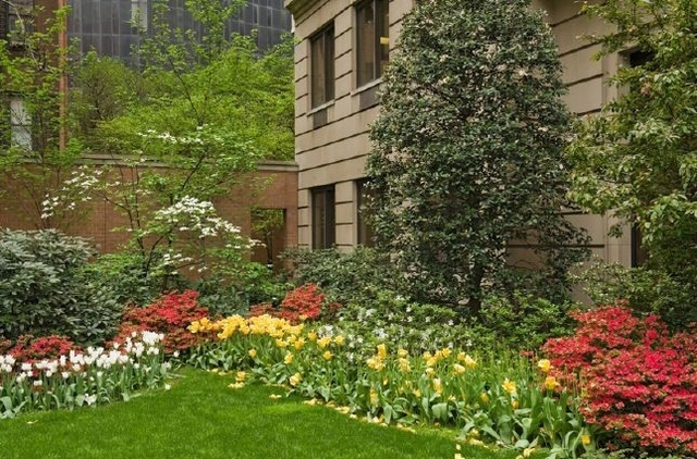 2 Bedrooms, Murray Hill Rental in NYC for $7,016 - Photo 1