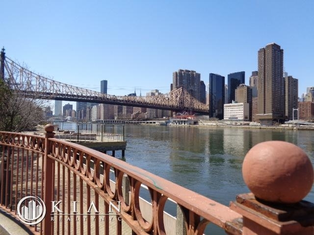 2 Bedrooms, Roosevelt Island Rental in NYC for $3,550 - Photo 1