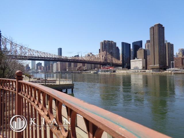 Studio, Roosevelt Island Rental in NYC for $2,450 - Photo 2