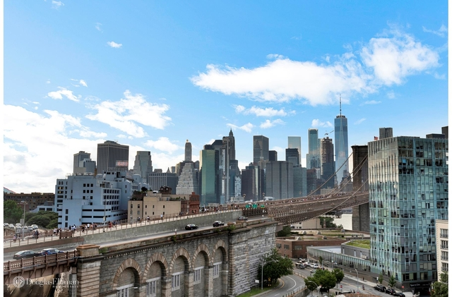 3 Bedrooms, DUMBO Rental in NYC for $7,999 - Photo 1