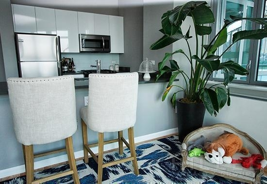 Studio, Hunters Point Rental in NYC for $2,860 - Photo 2