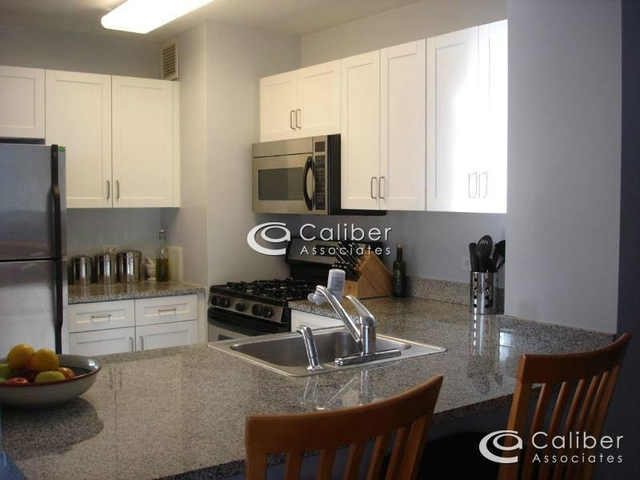 1 Bedroom, Civic Center Rental in NYC for $3,495 - Photo 2