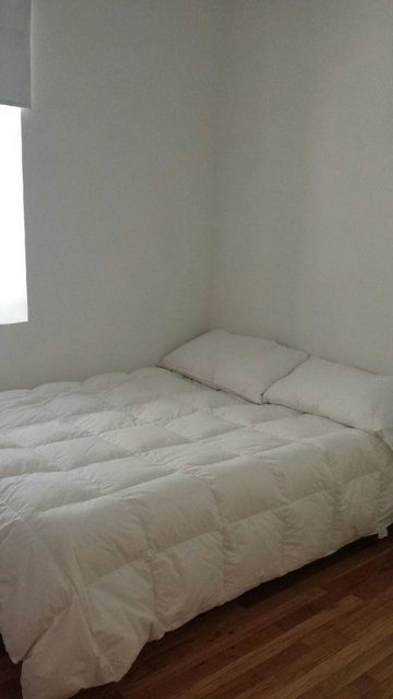 3 Bedrooms, Lincoln Square Rental in NYC for $3,595 - Photo 2