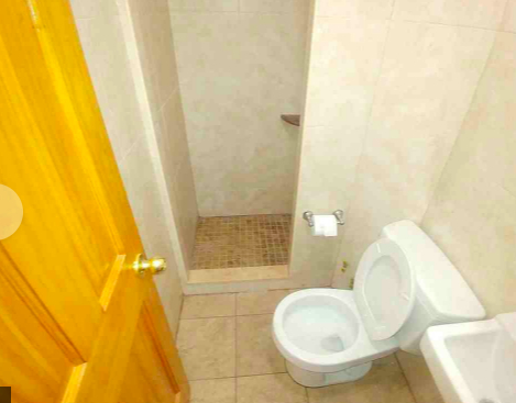 Studio, Chinatown Rental in NYC for $2,100 - Photo 2