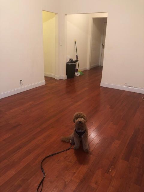 1 Bedroom, Washington Heights Rental in NYC for $1,965 - Photo 1