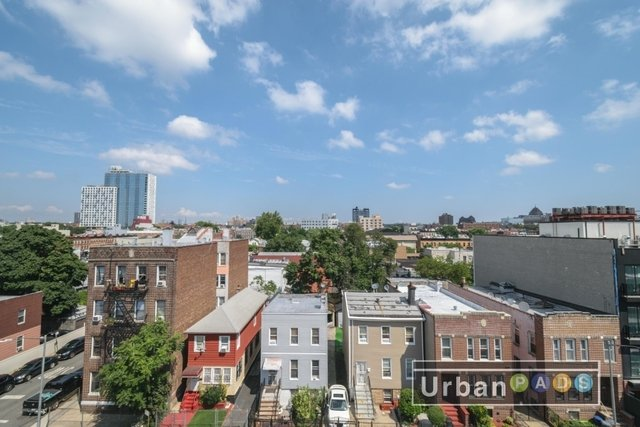 2 Bedrooms, Flatbush Rental in NYC for $2,566 - Photo 2