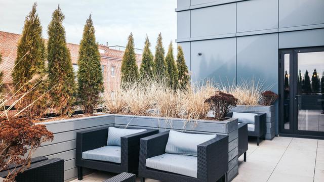 3 Bedrooms, Ridgewood Rental in NYC for $3,800 - Photo 2