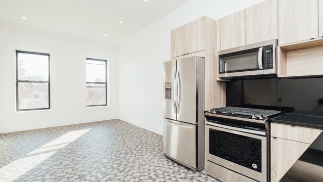 3 Bedrooms, Prospect Heights Rental in NYC for $4,999 - Photo 1