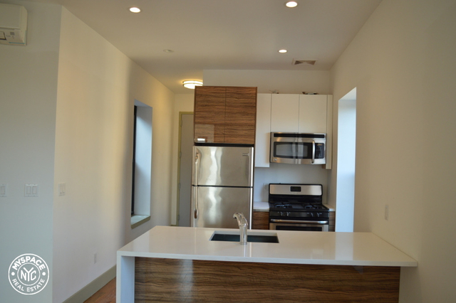 3 Bedrooms, Prospect Heights Rental in NYC for $3,399 - Photo 1