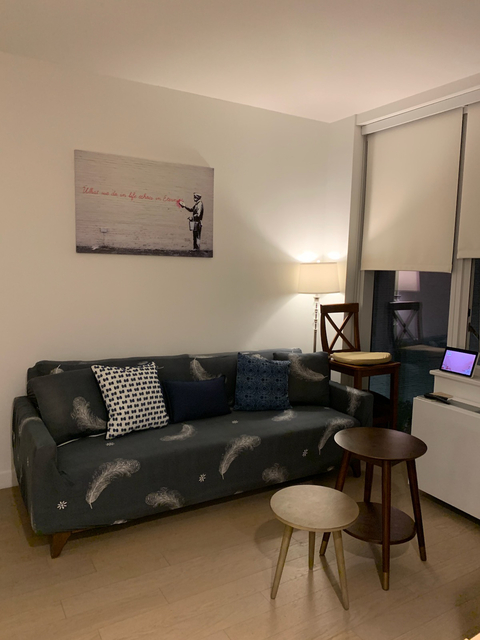 Studio, Long Island City Rental in NYC for $3,000 - Photo 2