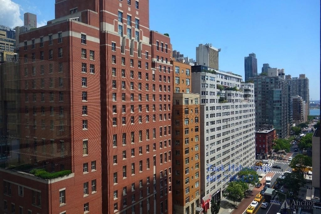 2 Bedrooms, Rose Hill Rental in NYC for $5,795 - Photo 1