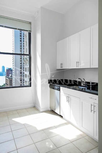2 Bedrooms, Financial District Rental in NYC for $5,019 - Photo 1