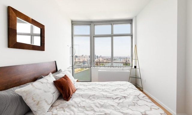 2 Bedrooms, Hunters Point Rental in NYC for $5,179 - Photo 2