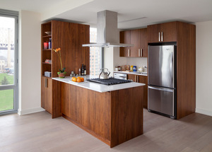 2 Bedrooms, Roosevelt Island Rental in NYC for $4,825 - Photo 2