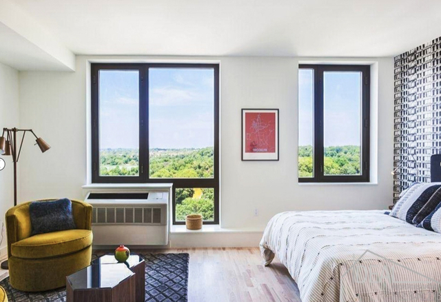 2 Bedrooms, Prospect Lefferts Gardens Rental in NYC for $3,600 - Photo 1