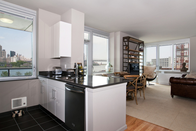 1 Bedroom, Hunters Point Rental in NYC for $3,328 - Photo 1