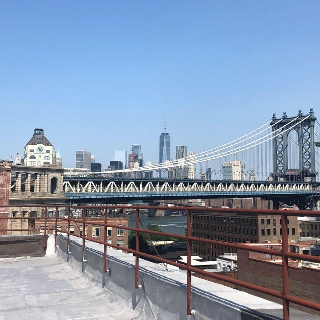 2 Bedrooms, DUMBO Rental in NYC for $3,995 - Photo 1
