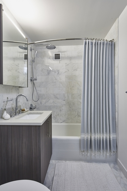 1 Bedroom, Hunters Point Rental in NYC for $3,646 - Photo 2