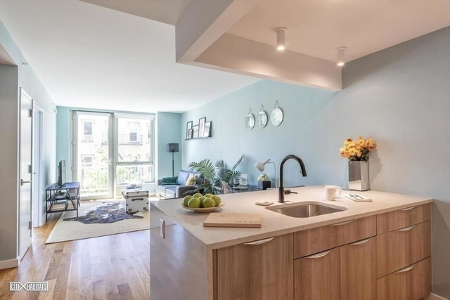1 Bedroom, Greenpoint Rental in NYC for $3,750 - Photo 2