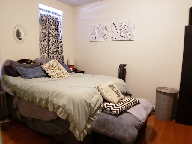 1 Bedroom, Astoria Rental in NYC for $2,267 - Photo 1