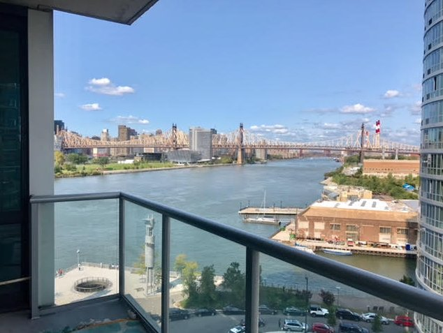 2 Bedrooms, Hunters Point Rental in NYC for $3,950 - Photo 1