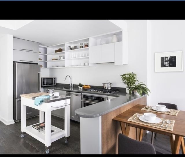 1 Bedroom, DUMBO Rental in NYC for $3,577 - Photo 2