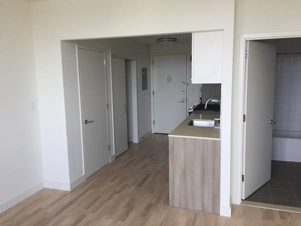 Studio, Prospect Lefferts Gardens Rental in NYC for $2,350 - Photo 2