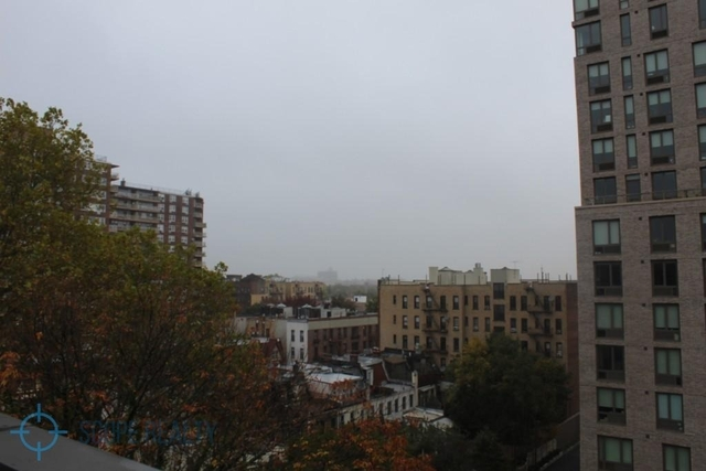 2 Bedrooms, Prospect Lefferts Gardens Rental in NYC for $2,700 - Photo 2