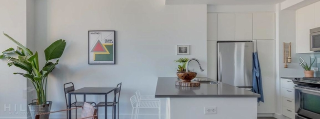 1 Bedroom, Fort Greene Rental in NYC for $3,370 - Photo 2