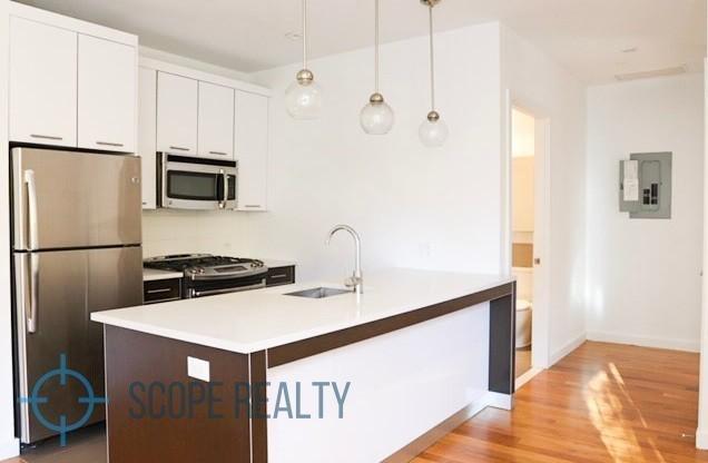 1 Bedroom, Prospect Lefferts Gardens Rental in NYC for $3,475 - Photo 1