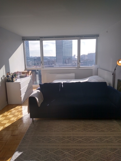 1 Bedroom, Long Island City Rental in NYC for $3,195 - Photo 1