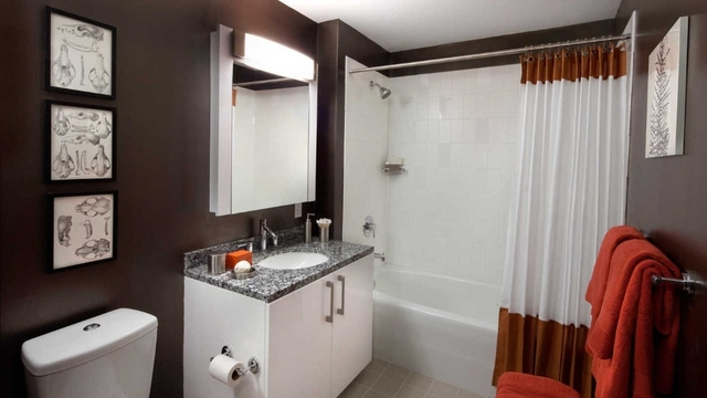 1 Bedroom, Downtown Brooklyn Rental in NYC for $3,226 - Photo 2