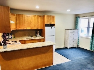 Studio, Middle Village Rental in NYC for $1,400 - Photo 1