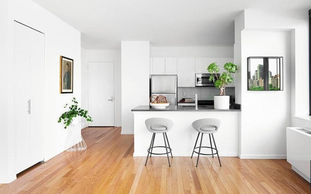 1 Bedroom, Hunters Point Rental in NYC for $3,350 - Photo 1