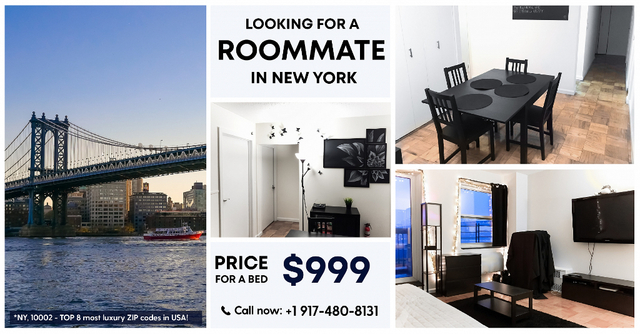 Room, Two Bridges Rental in NYC for $999 - Photo 1