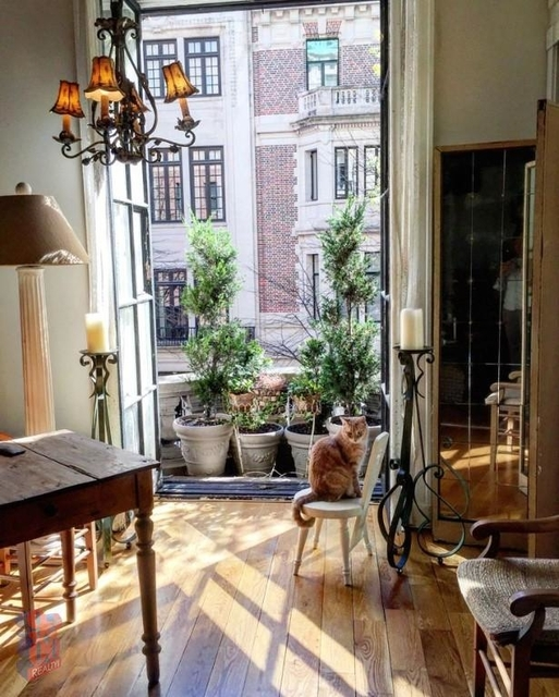 1 Bedroom, Upper East Side Rental in NYC for $4,379 - Photo 1