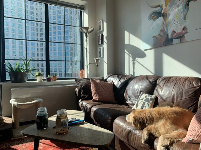 1 Bedroom, Long Island City Rental in NYC for $2,833 - Photo 1