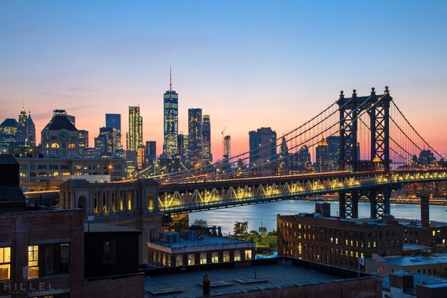 1 Bedroom, DUMBO Rental in NYC for $4,964 - Photo 2