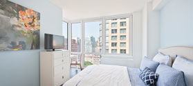 2 Bedrooms, Downtown Brooklyn Rental in NYC for $4,353 - Photo 2