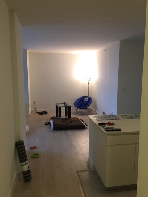 2 Bedrooms, Long Island City Rental in NYC for $3,877 - Photo 1