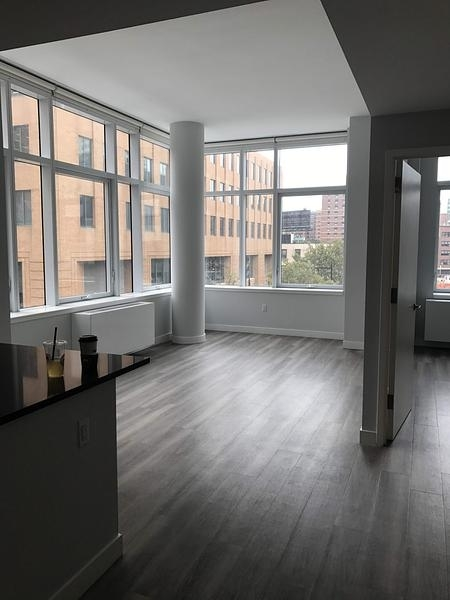1 Bedroom, Downtown Brooklyn Rental in NYC for $3,873 - Photo 1