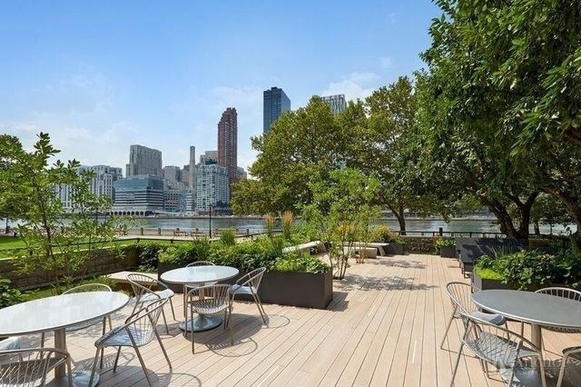 2 Bedrooms, Roosevelt Island Rental in NYC for $3,438 - Photo 1