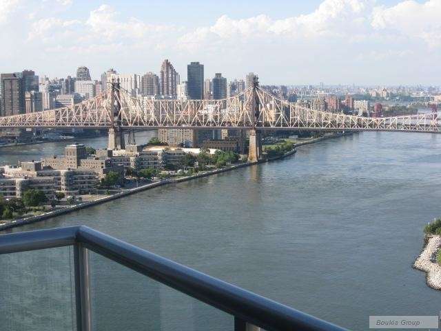 2 Bedrooms, Hunters Point Rental in NYC for $4,235 - Photo 1